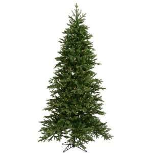 A896191 12 ft. x 71 in. Balsam Fir Dura Lit 1650CL