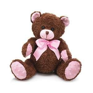 Pink & Brown Plush Teddy Bear Adorable Stuffed Animal