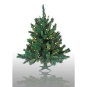 Christmas Tree Light Color Multicolored Lights