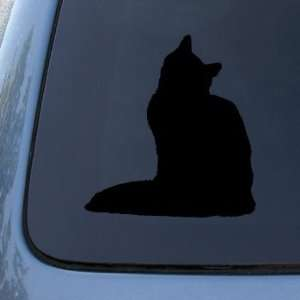 SIBERIAN   Cat   Vinyl Car Decal Sticker #1559  Vinyl Color Black