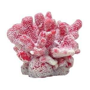 Blue Ribbon MINI CAULIFLOWER CORAL PINK