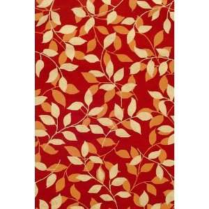 Red Indoor/Outdoor Rug   HRDVG   5 x 8 Rectanggle